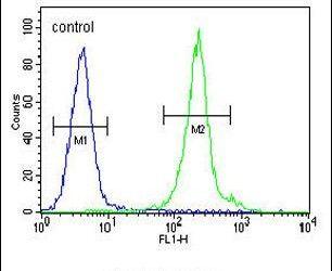 IL-12 p40 Antibody in Flow Cytometry (Flow)