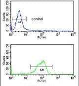 IL5RA Antibody in Flow Cytometry (Flow)