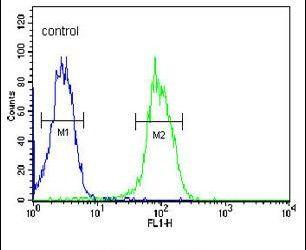 VEGF Receptor 2 Antibody in Flow Cytometry (Flow)