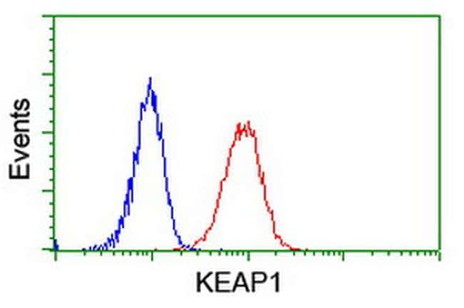 KEAP1 Antibody in Flow Cytometry (Flow)
