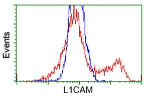 L1CAM Antibody in Flow Cytometry (Flow)
