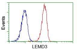 LEMD3 Antibody in Flow Cytometry (Flow)