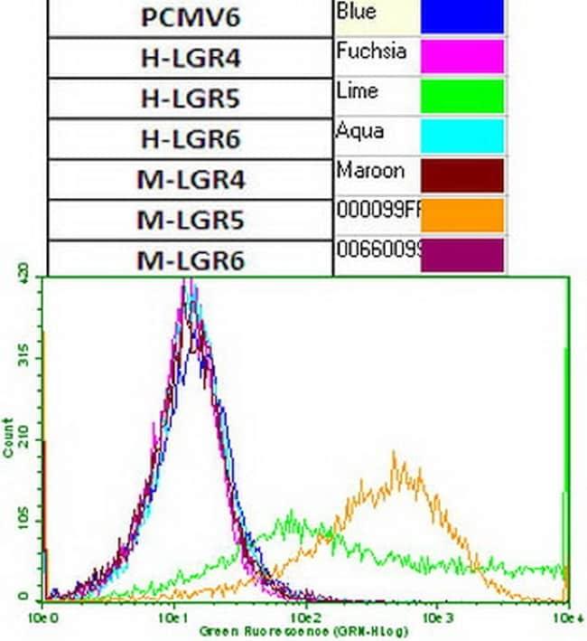 LGR5 Antibody in Flow Cytometry (Flow)