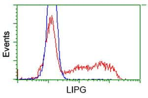 LIPG Antibody in Flow Cytometry (Flow)