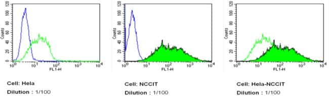 TRA-1-81 Antibody in Flow Cytometry (Flow)