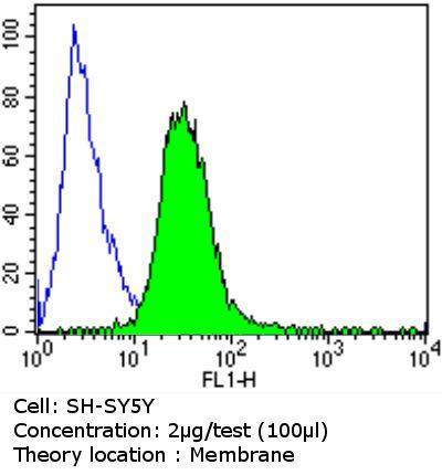 PSD-95 Antibody in Flow Cytometry (Flow)