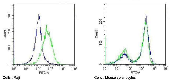 CD86 Antibody in Flow Cytometry (Flow)