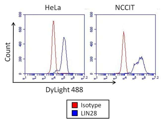 Mouse IgG2a Isotype Control in Flow Cytometry (Flow)