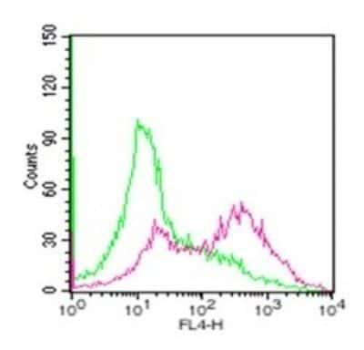 CD254 (RANK Ligand) Antibody in Flow Cytometry (Flow)