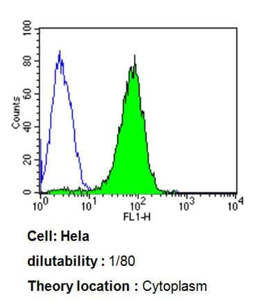 ARF1/ARF3/ARF5/ARF6 Antibody in Flow Cytometry (Flow)