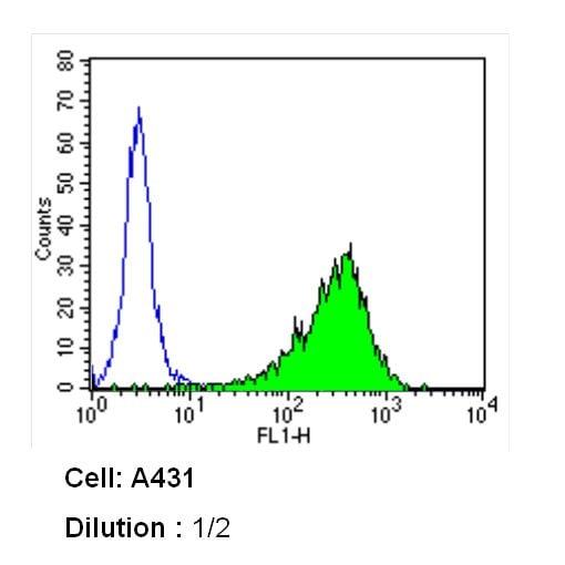 Thrombomodulin Antibody in Flow Cytometry (Flow)