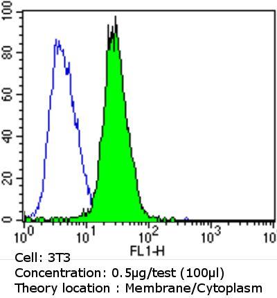 EGFR Antibody in Flow Cytometry (Flow)