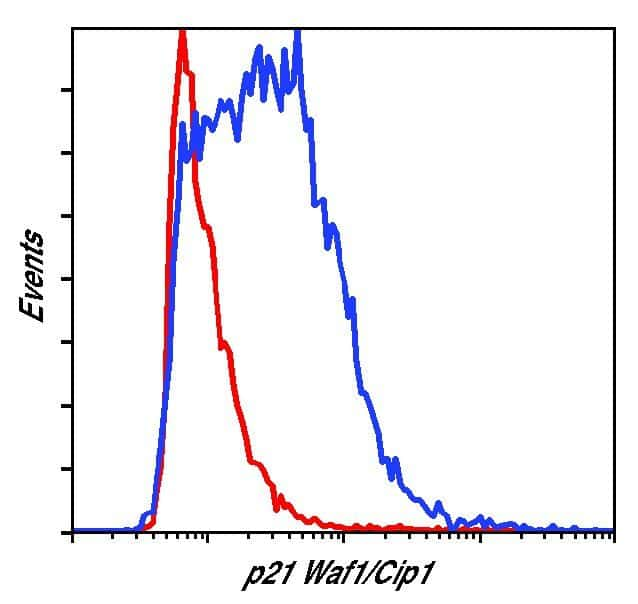p21 Antibody in Flow Cytometry (Flow)