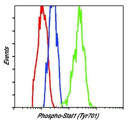 Phospho-STAT1 (Tyr701) Antibody in Flow Cytometry (Flow)