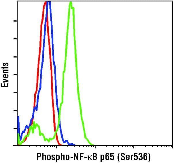 Phospho-NFkB p65 (Ser536) Antibody in Flow Cytometry (Flow)