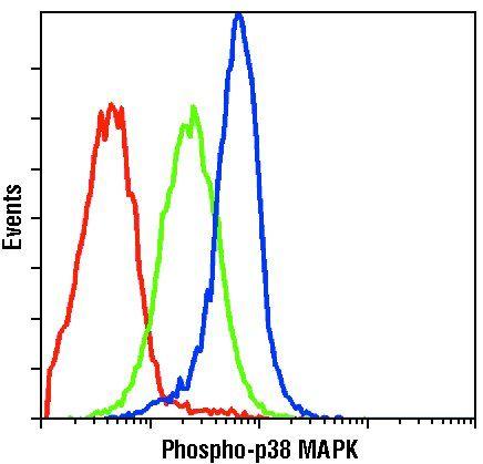 Phospho-p38 MAPK (Thr180, Tyr182) Antibody in Flow Cytometry (Flow)