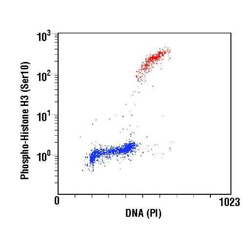 Phospho-Histone H3 (Ser10) Antibody in Flow Cytometry (Flow)