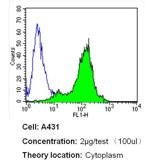 beta Actin Loading Control Antibody in Flow Cytometry (Flow)