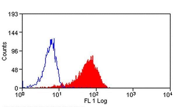 VCAM-1 Antibody in Flow Cytometry (Flow)