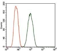 Dynactin 4 Antibody in Flow Cytometry (Flow)
