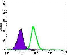 CD104 Antibody in Flow Cytometry (Flow)