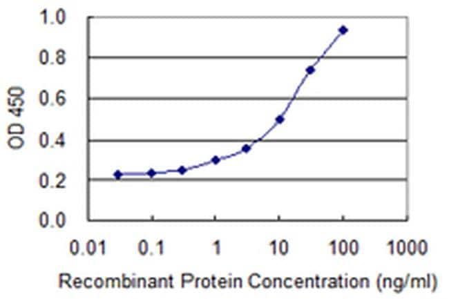 HSPA2 Antibody in ELISA (ELISA)