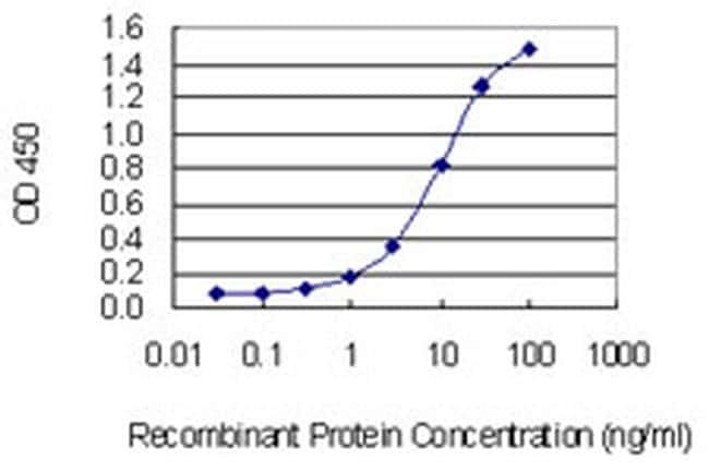 PPP1R17 Antibody in ELISA (ELISA)