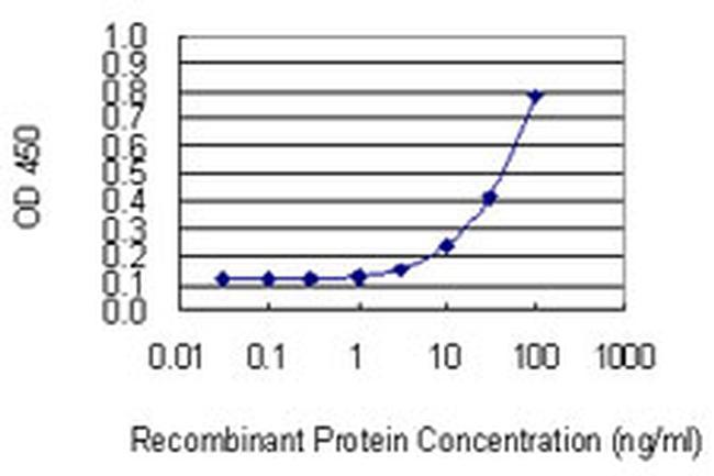 NUDT13 Antibody in ELISA (ELISA)