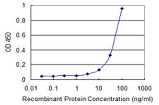 ZSCAN1 Antibody in ELISA (ELISA)