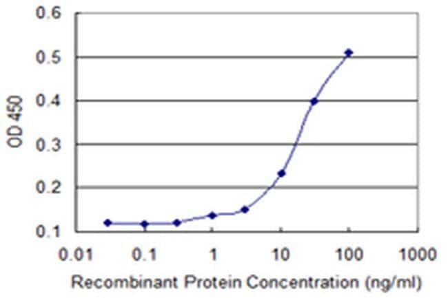 NACA2 Antibody in ELISA (ELISA)
