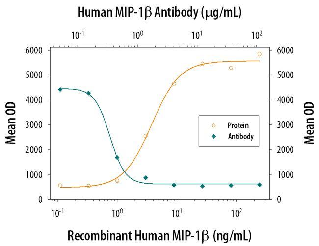 CCL4 Antibody in Neutralization