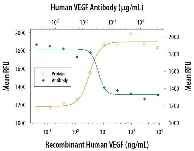 VEGF Antibody in Neutralization (Neu)