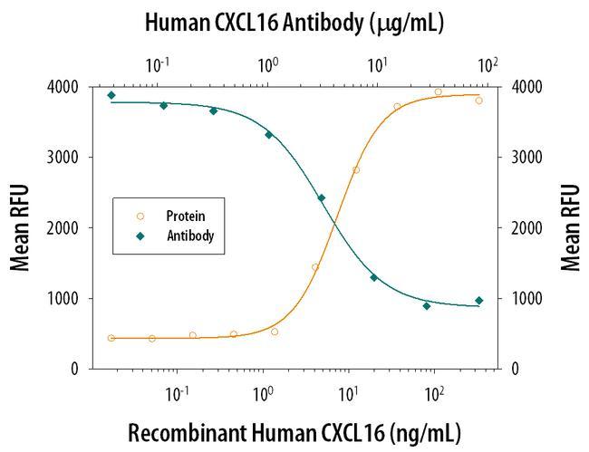 CXCL16 Antibody in Neutralization