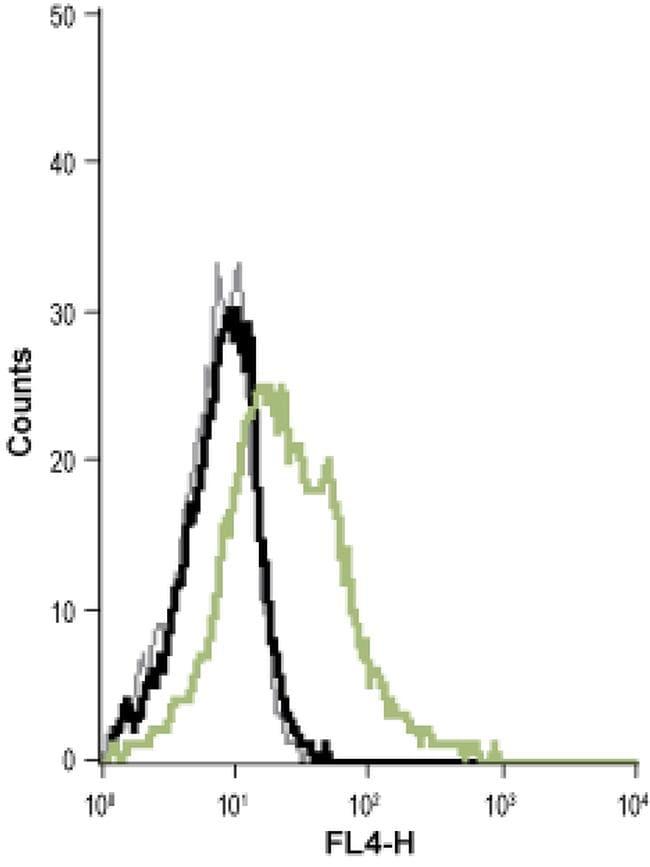 KCNN4 (extracellular) Antibody in Flow Cytometry (Flow)