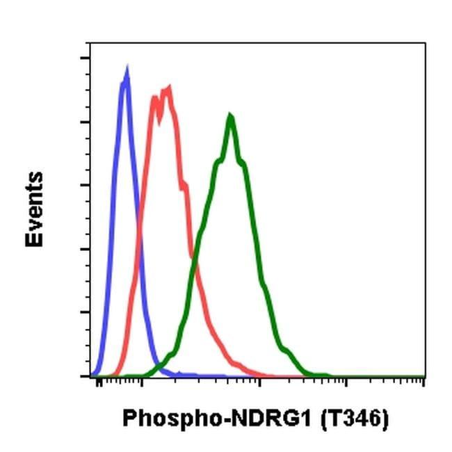 Phospho-NDRG1 (Thr346) Antibody in Flow Cytometry (Flow)