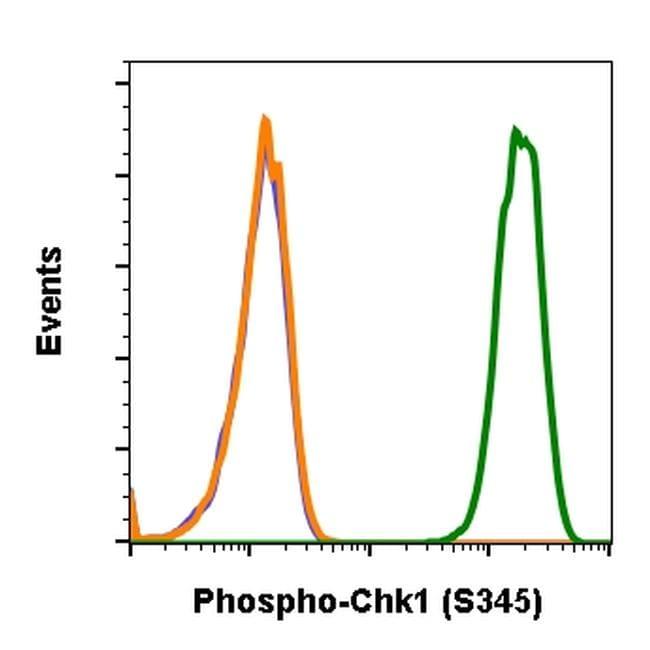 Phospho-CHK1 (Ser345) Antibody in Flow Cytometry (Flow)