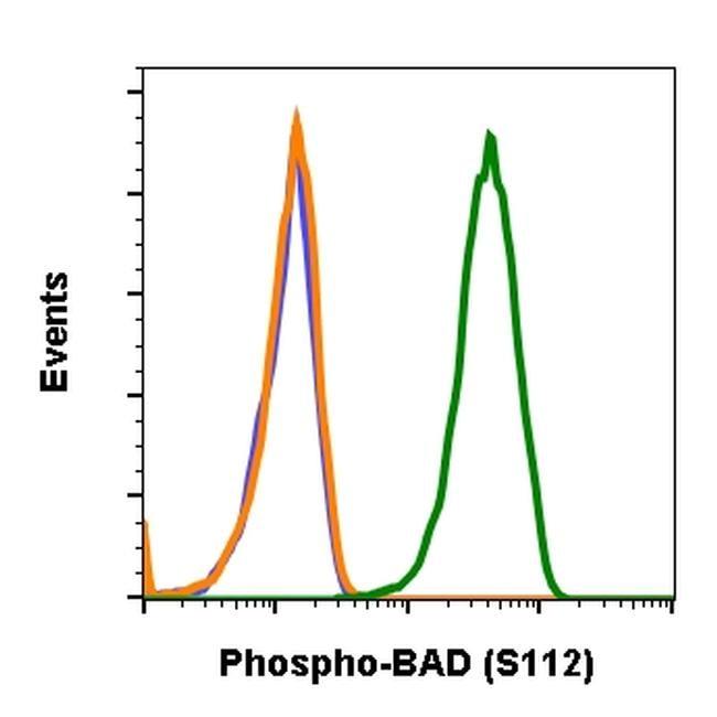 Phospho-BAD (Ser112) Antibody in Flow Cytometry (Flow)