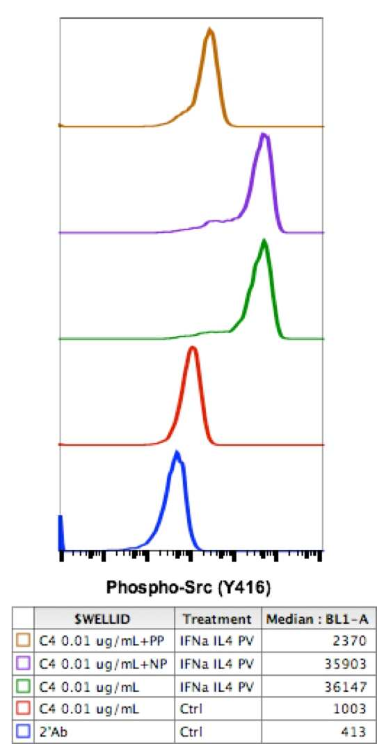 Phospho-SRC (Tyr416) Antibody in Flow Cytometry (Flow)