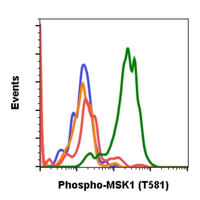Phospho-MSK1 (Thr581) Antibody in Flow Cytometry (Flow)