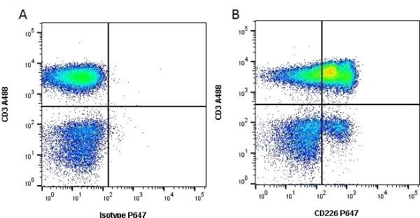 CD226 (DNAM-1) Antibody in Flow Cytometry (Flow)