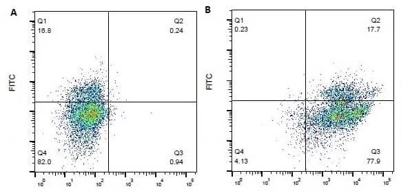 CD18 (LFA-1 beta) Antibody in Flow Cytometry (Flow)
