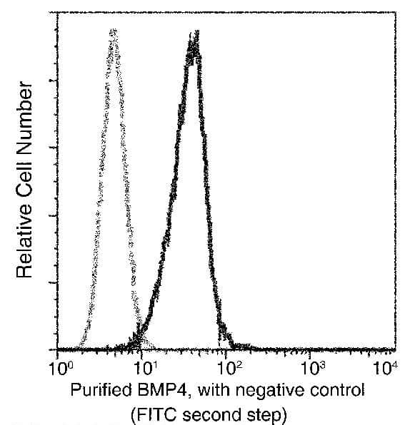 BMP-4 Antibody in Flow Cytometry (Flow)