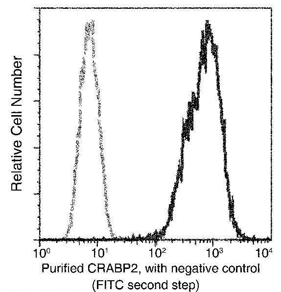 CRABP2 Antibody in Flow Cytometry (Flow)