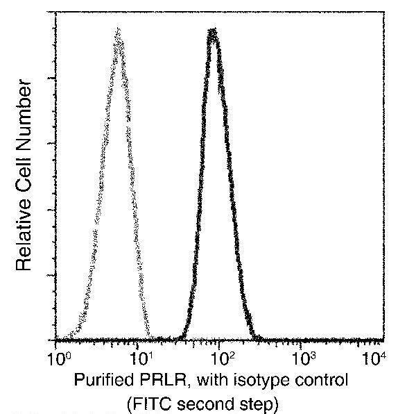 Prolactin Receptor Antibody in Flow Cytometry (Flow)