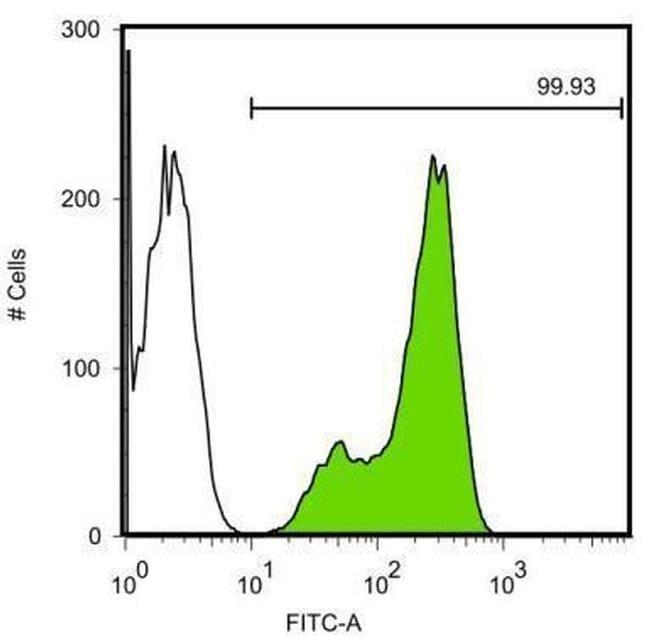 Nanog Antibody in Flow Cytometry (Flow)