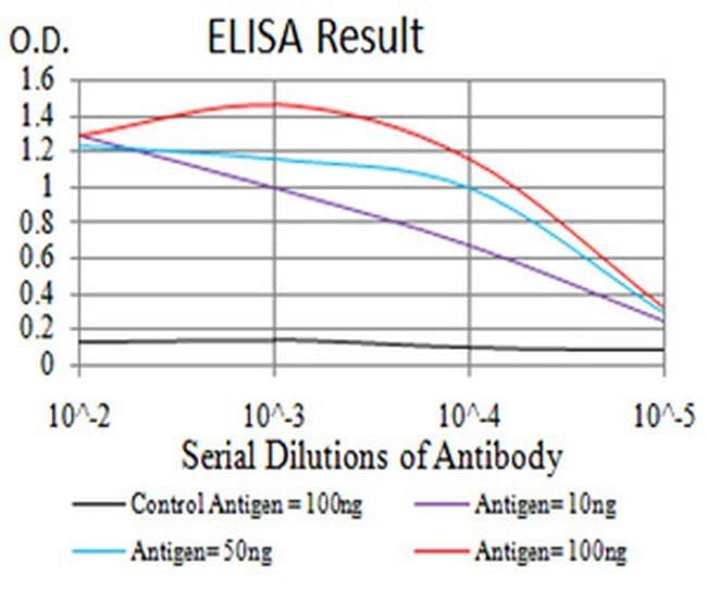 ALDH6A1 Antibody in ELISA (ELISA)