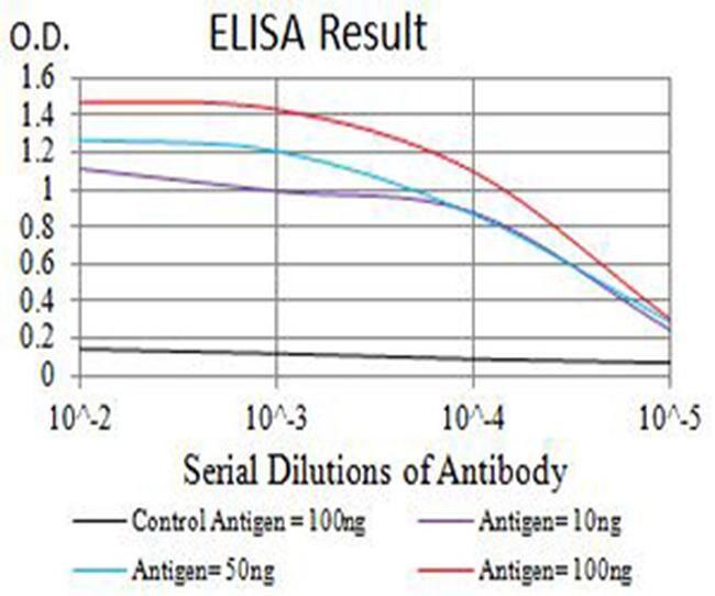 ATPIF1 Antibody in ELISA (ELISA)