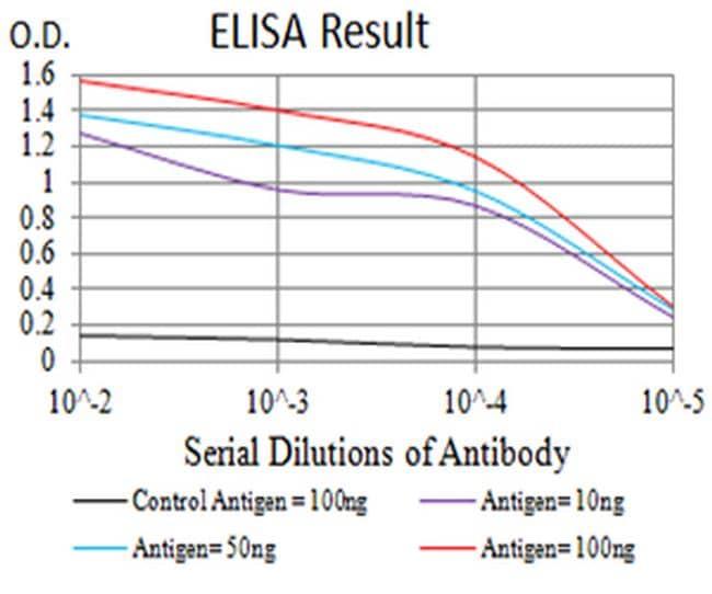 CHRNA10 Antibody in ELISA (ELISA)