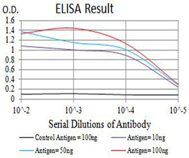 CHRNA4 Antibody in ELISA (ELISA)