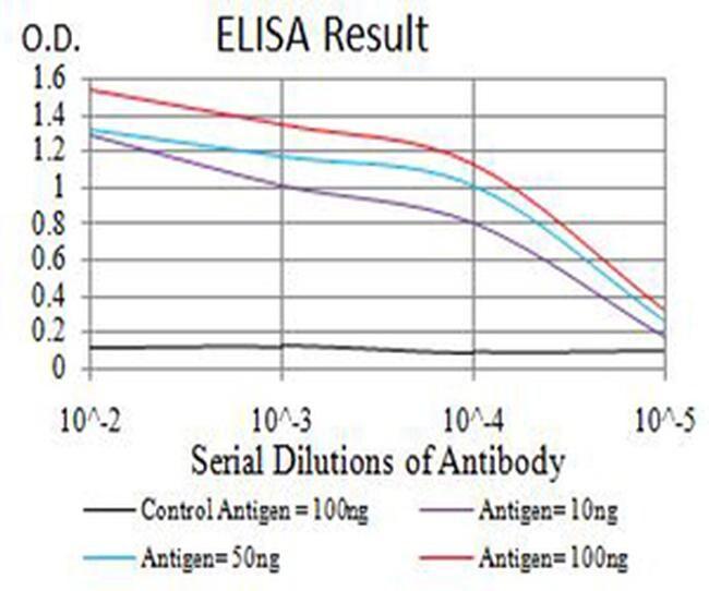 CHRNA6 Antibody in ELISA (ELISA)